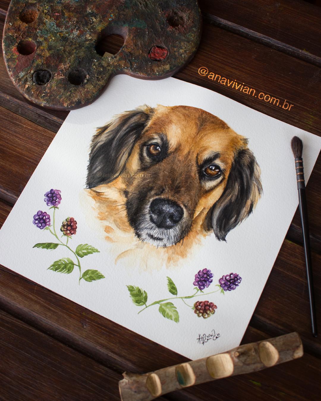 Aquarela Cachorro SRD Amora